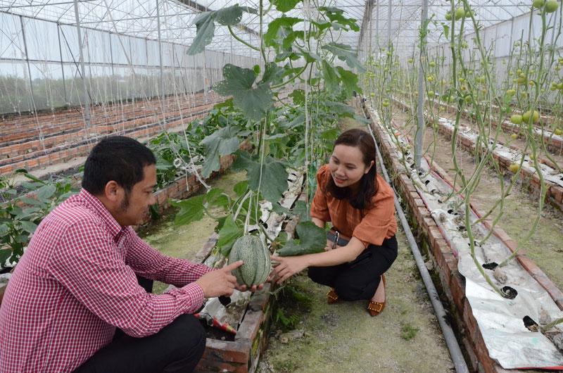Hướng tới trang trại nông sản hữu cơ