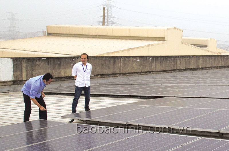 Phát triển điện mặt trời, giảm gánh nặng cho lưới điện Quốc gia